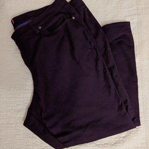 Torrid Purple Stretch Jeans
